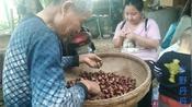 七十多岁的外公种的栗子熟了,筛捡过后拿去卖,四块一斤贵么?