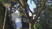 布里斯班昆士兰科技大学