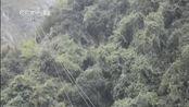 湖北秭归再发四级以上地震 暂无伤亡
