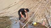 小伙深潭边捡柴火发现个野洞,洞口有一条尾巴,挑开后高兴坏了!
