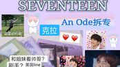 【SEVENTEEN】正规三An Ode拆专+第一次和姐妹去线下生日应援//进来听歌