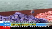 湛江海关联合海警 公安等部门:截获走私冻品超500吨