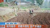 【四川新闻频道】南充营山骆市镇:防疫不放松 生产不停步