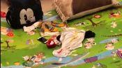 熊孩子乱爬洗手间或厨房,教你一招,边上铺点指压板,效果很好