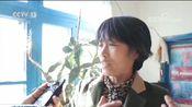 [东方时空]吉林珲春 边境上的乡镇邮递员 金仁哲:帮买药 帮缴费 胜似亲人