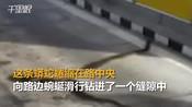 【泰国】女司机开车刚过收费站 身后掉下近5米长巨蟒-掌闻视讯(国外)-掌闻资讯
