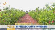 [早安山东]潍坊24家农业企业成为山东省村级12396科技信息服务站