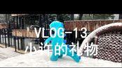 【 人间VLOG-13】| study with me | 100天vlog挑战!0基础自学法律!你喜欢的人还在身边吗?