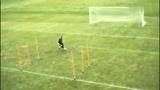 足球视频,托雷斯教你踢足球