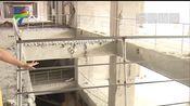 广州 增城区:一到三楼被拆 商场运营商无证施工