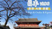 日本旅行vlog | 关东、关西7日游 | 东京、箱根、大阪、京都 | 体验温泉、神社、大阪环球影城