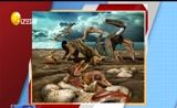 """[说天下]中国科学家发现亿年""""翼龙伊甸园""""胚胎化石首现"""