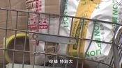 一年5000亿!马云刘强东背后做推手,这交易为啥这么火爆?
