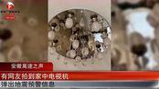突发!河北唐山发生4.5级地震,唐山电视弹出地震预警信息