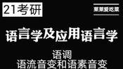 21考研 汉语言文学 语言学及应用语言学 语调、语流音变和语速音变