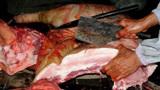 猪身上哪个部位的肉最好吃?农村杀猪大叔亲口告诉你,学会了吗?