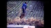 广西记忆:1986年的桂林,看看当时当地的模样