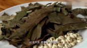 舌尖上的中国:传统药膳川味枇杷鳄鱼汤,清热化痰最适合小孩喝了