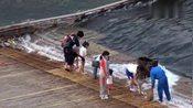 岛国日本这样截断河流捕鱼,这是要赶尽杀绝呀