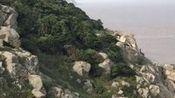 普陀山风景—在线播放—优酷网,视频高清在线观看