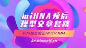【生信自学网】-课程试学-miRNA预后模型文章套路视频(COX模型验证/microRNA/区分3p和5p)