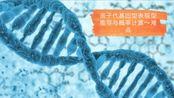 亲子代基因型表现型推导和概率计算