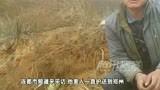 河南中牟县农民被开发商铲车碾死现场