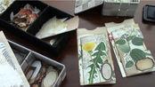 【Junk journal】插袋内页制作教程 植物系复古手帐拼贴