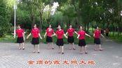 宝桦广场舞神奇秀美的梵净山
