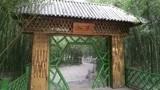 走进郑州市区面积最大竹园,恍若置身绿色梦幻之境,你知道在哪吗