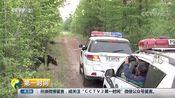 [第一时间]大兴安岭:民警惊险救助受伤棕熊