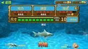 {小迷妹}当我们的鲨鱼碰到更大的鲨鱼会战胜大鲨鱼吗??游戏