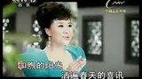 和谐大家庭(王丽达 KTV)