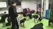 北京健身教练资格证书培训之普拉提训练-北京星灿健身学院