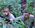 猎杀:游击队开一枪就跑,把鬼子折磨坏了,还是游击战厉害