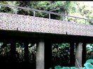 广西民族大学水榭亭,2011.9.5
