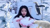 日本北海道的冬天 札幌的雪 企鹅和北极熊 纹别破冰船 鄂霍次克海流冰 VLOG034