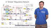 合成生物学编程活细菌-克里斯托弗·沃格特