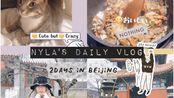 【春日酱】日常vlog | 在北京的两天 | 雪 | 撸猫 | 雍和宫 | 找工作 | 涮肉 | 烤肉