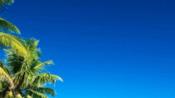在巴厘岛罗威纳,坐上螃蟹船在海上看日出-旅游-高清完整正版视频在线观看-优酷