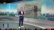 国庆好去处 2021年江苏园艺博览会获奖设计展出