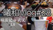 VLOG#28|曦游记in武汉1.0|内存卡出错产物是这期很水的视频