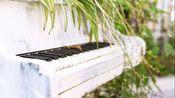 【钢琴】《秘密的庭院》理查德·克莱德曼