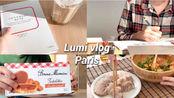 【治愈生活】 Lumi | 字幕 | 法国VLOG 法国艺术生日常 | VLOG 2020.1.9