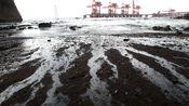 0039-538.阿拉斯加海域的油污居然被一个6岁美国小孩想的办法清除了!