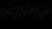 // vue + canvas 50行代码绘制经典黑客帝国特效【练手专用】