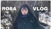 Rosa 墨尔本 VLOG/六个月生活片段--我回来了