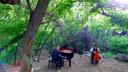 【猴姆独家】美翻了!钢琴和大提琴组合The Piano Guys深情演奏Christina Perri热单
