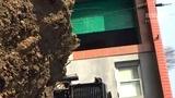 山东青岛平度市柳林村坦克型钻井设备户外作业2
