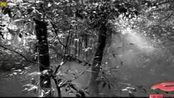 滇西大反攻:中国远征军第二次出征,全副美式装备、头戴钢盔